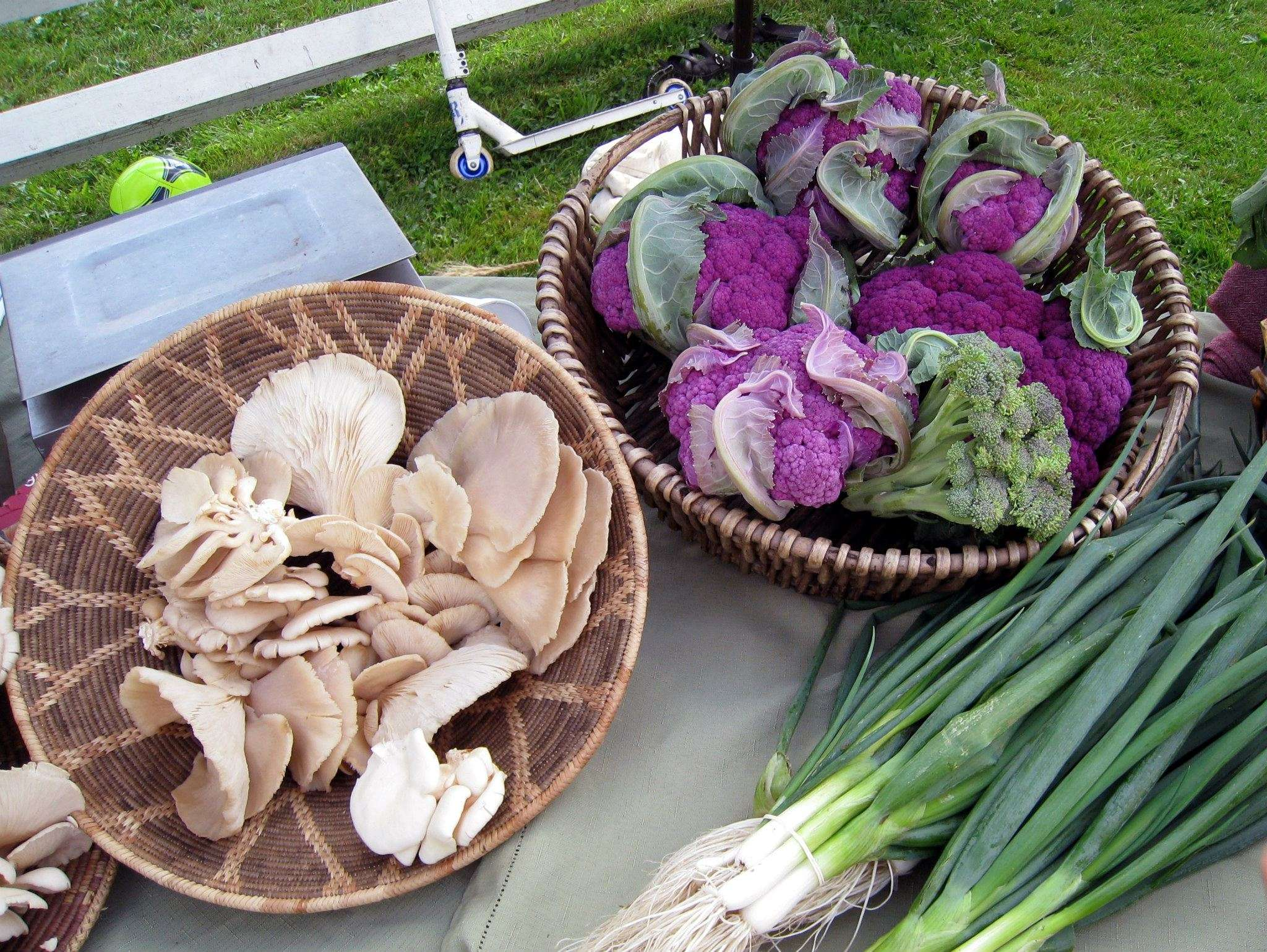 Craftsbury Farmers Market Vendor Products - fresh vegetables