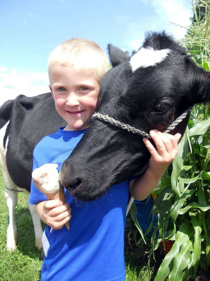 Kingdom Creamery of VT - premium ice cream - boy with cow - Craftsbury Farmers Market