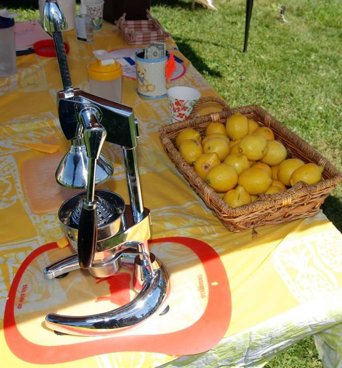 E&T's Fresh Lemonade - Craftsbury Farmers Market