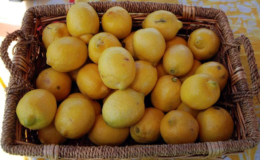 E&T's Fresh Lemonade lemons - Craftsbury Farmers Market
