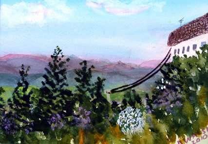 Donna Walsh Warren - landscape