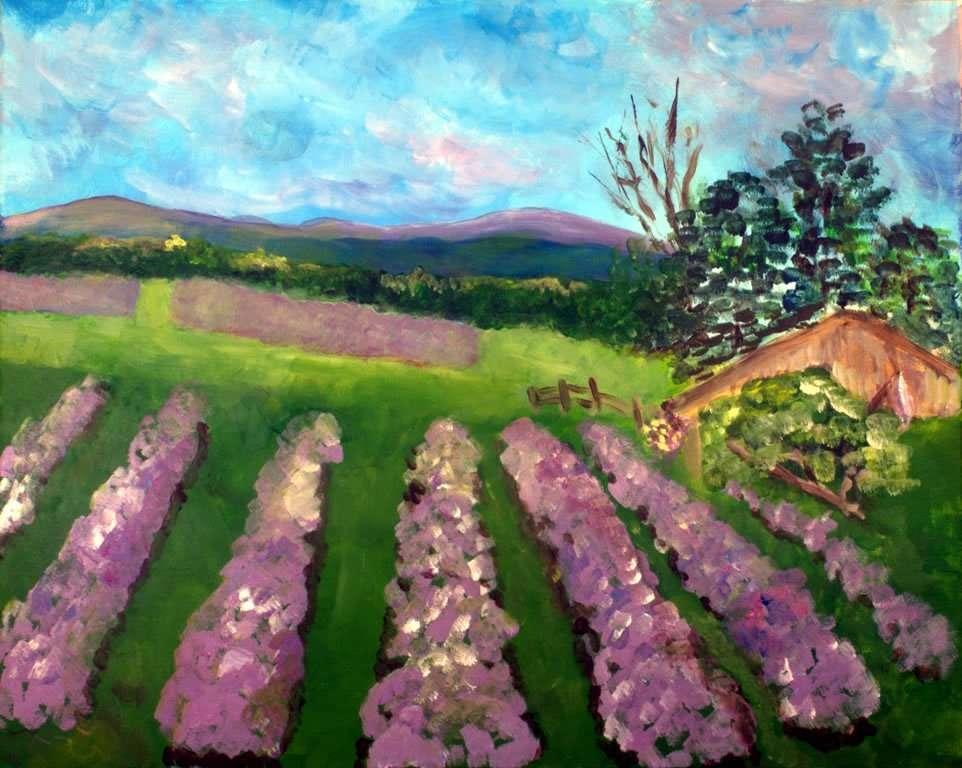 Donna Walsh Warren - lavender landscape