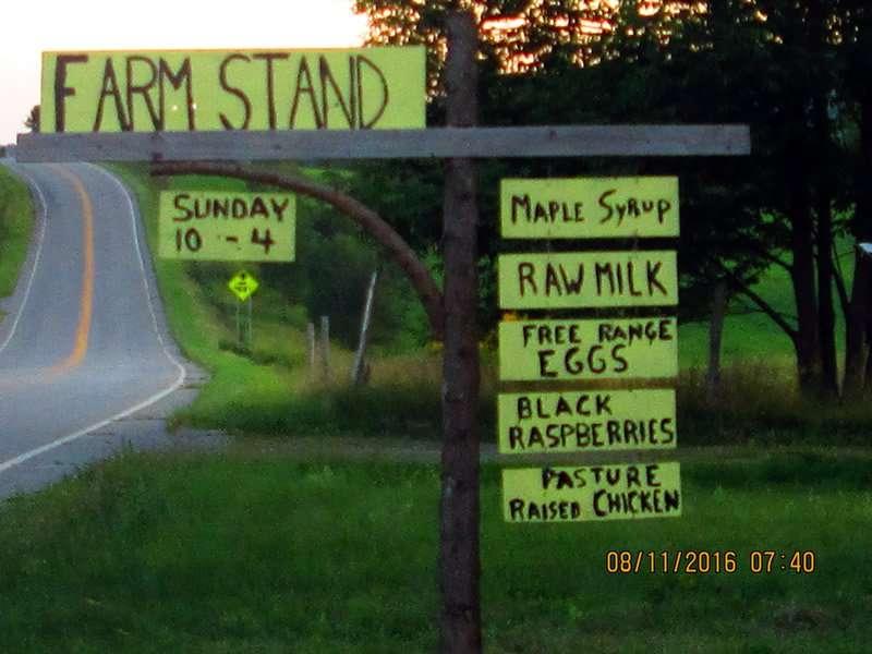 Albany Farm Stand - Albany, VT