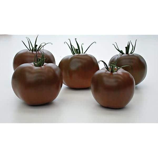 The Craftsbury Farmers' Market 2017 tomato taste test winner: Kakao